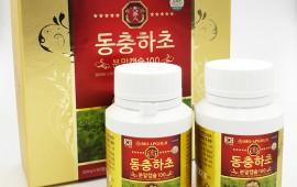 Những điều cần biết về đông trùng hạ thảo Hàn Quốc